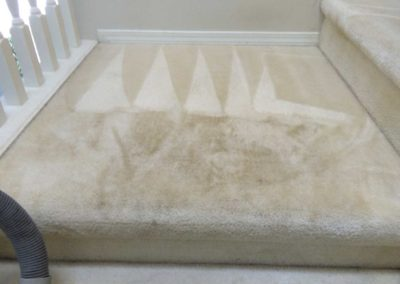 Before-Cleaning-Carpet