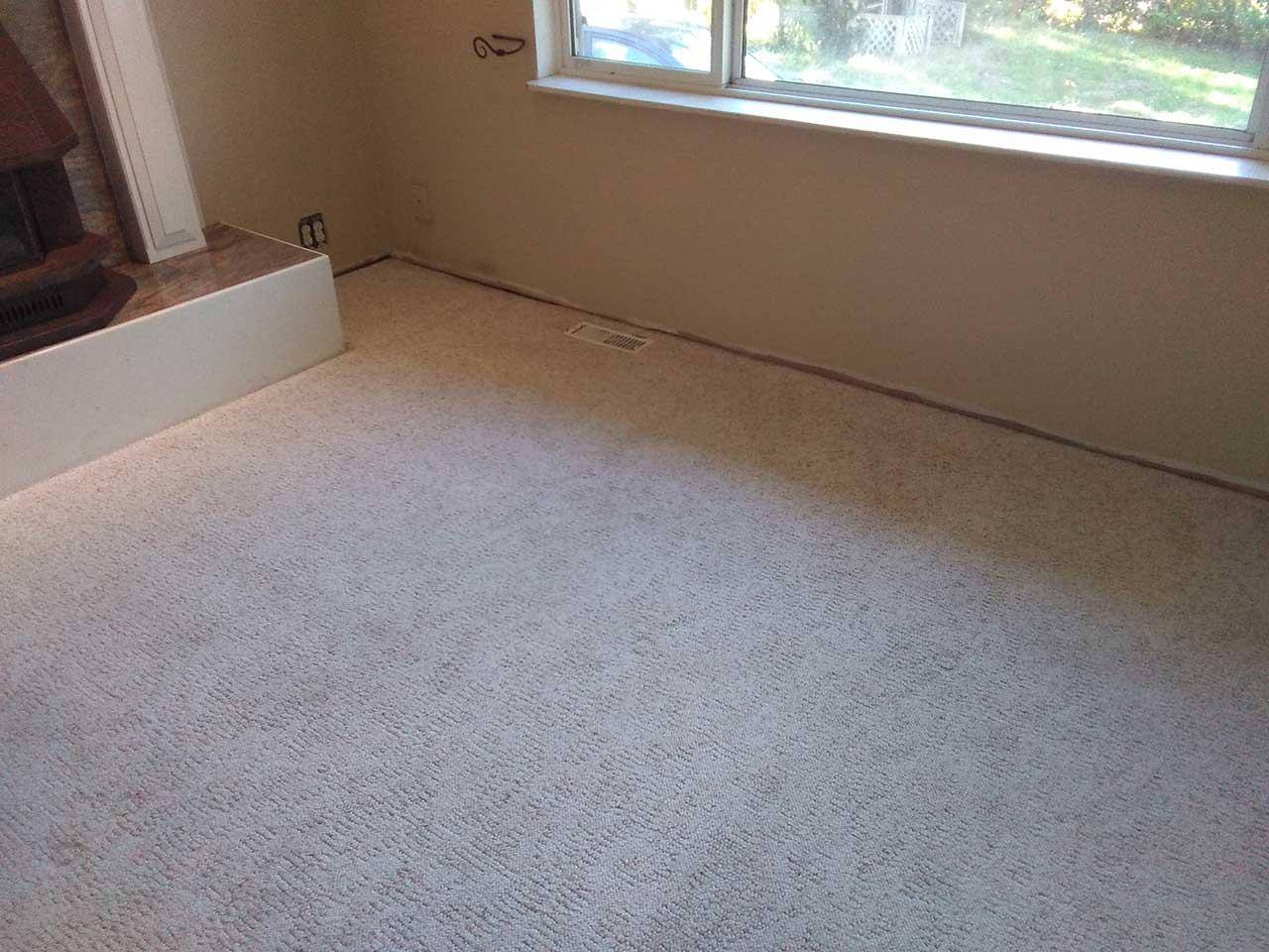 Carpet cleaning maple ridge floor matttroy for Flooring maple ridge